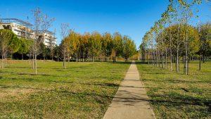Parc Georges Charpak Montpellier 11