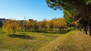 Parc Georges Charpak Montpellier 14