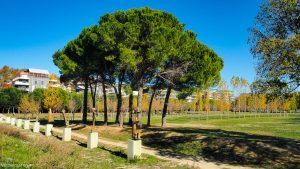 Parc Georges Charpak Montpellier 6