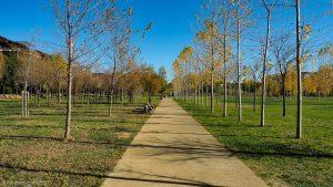 Parc Georges Charpak Montpellier 9