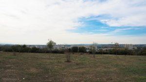 Parc Malbosc Montpellier 2