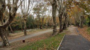 Parc Monplaisir Castelnau Le Lez 1