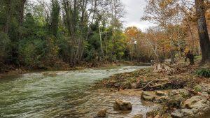 Parc Monplaisir Castelnau Le Lez 3