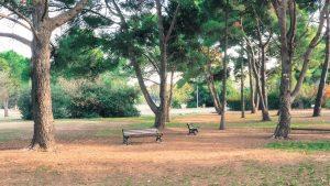 Parc Montcalm Montpellier 6