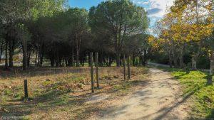 Parcours De Sante De Grammont Montpellier 5