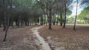 Parcours De Sante De Grammont Montpellier 7