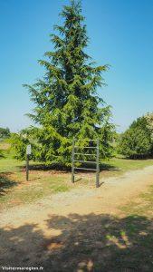 Parcours De Sante Jean Rieusset Valergues 6