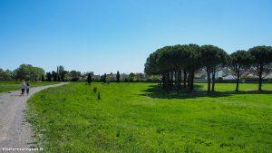 Parcours Santé De Bonneterre Lattes 8