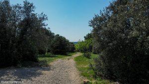 Parcours Santé De Castelnau Le Lez 4