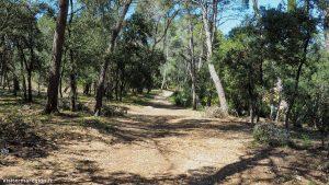 Parcours Sportif Du Bois De La Plaine Clapiers 16