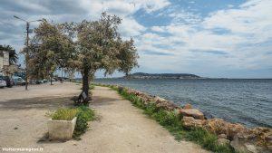 Promenade Sur Le Port De Bouzigues 6