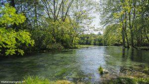 Randonnée Bois Saint Sauveur Saint Clement De Riviere 15