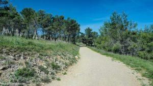 Randonnée Bois Saint Sauveur Saint Clement De Riviere 16