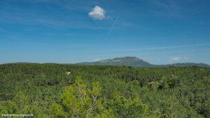 Randonnée Bois Saint Sauveur Saint Clement De Riviere 18