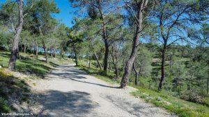 Randonnée Bois Saint Sauveur Saint Clement De Riviere 3