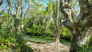 Randonnée Bois Saint Sauveur Saint Clement De Riviere 5
