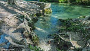 Randonnée Bois Saint Sauveur Saint Clement De Riviere 7