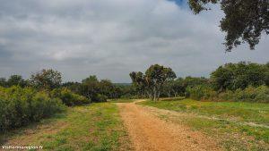 Randonnée De Laqueduc De Castries 7
